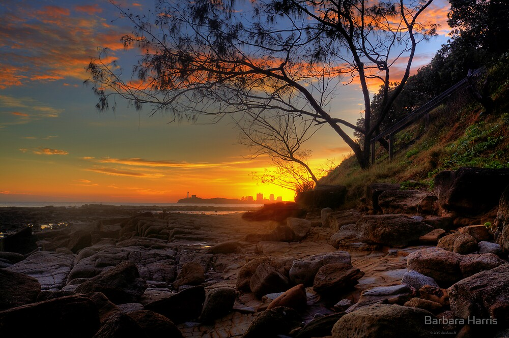 Sunrise over Point Cartwright. by Barbara Harris