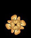"LIGHTFLOWER by Antonello Incagnone ""incant"""