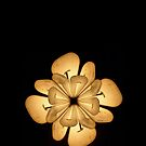 "LIGHTFLOWER by Antonello Incagnone ""incant"""