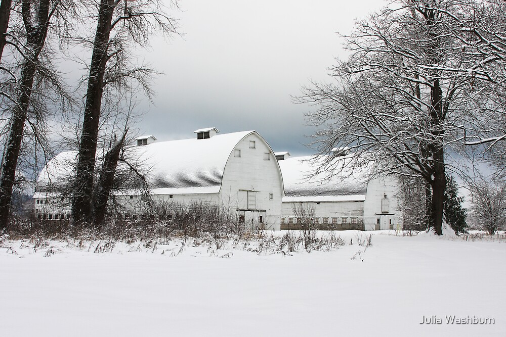 Twin Barns by Julia Washburn