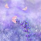 Lavender Blue by Catherine Hamilton-Veal  ©