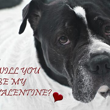 WILL YOU BE MY VALENTINE? FROM SNOOPY by Mia1