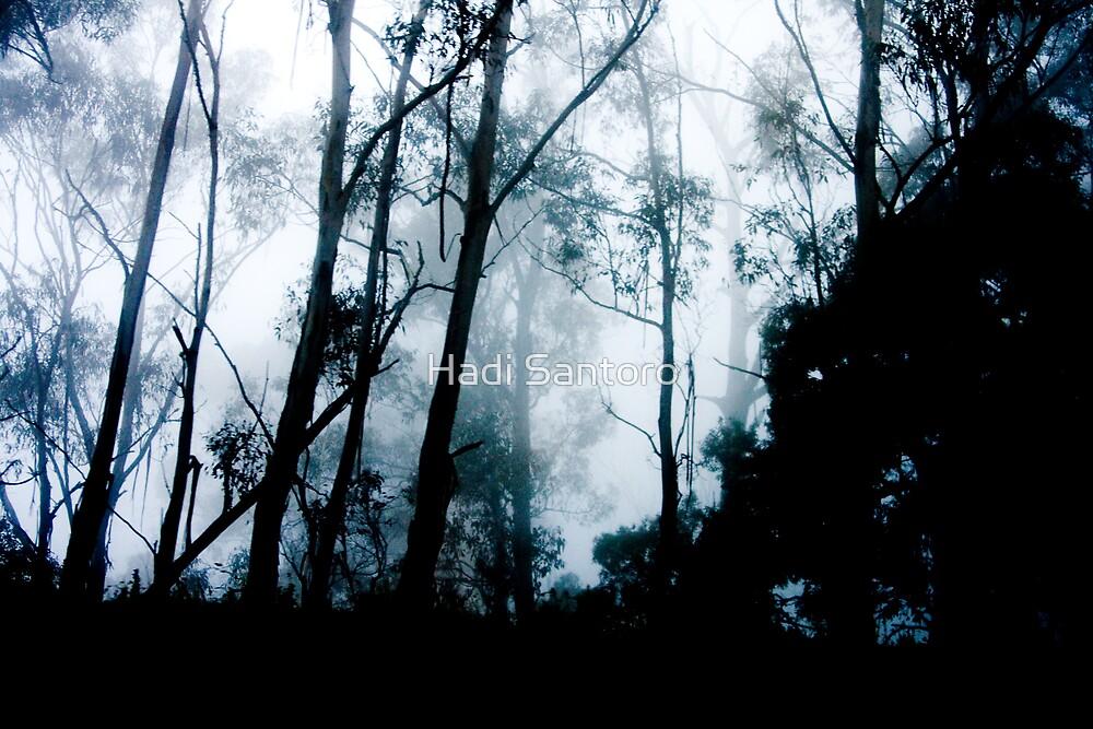 Through The Mist by Hadi Santoro
