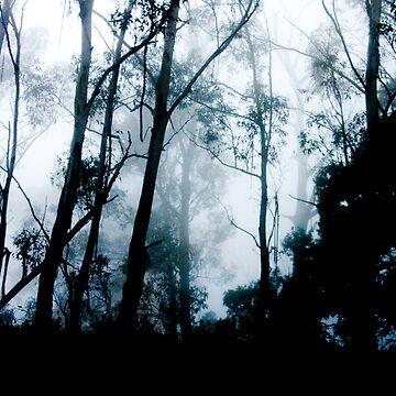 Through The Mist by rainbow1638