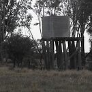 Water Tank on Rickety Stand by 4spotmore