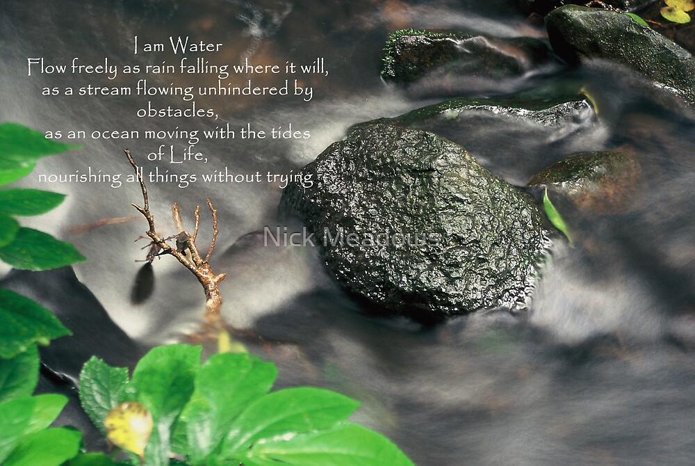 I am water by Nick Meadows