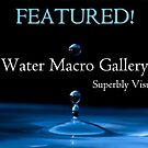 Water Macro - Featured by wildpatchouli