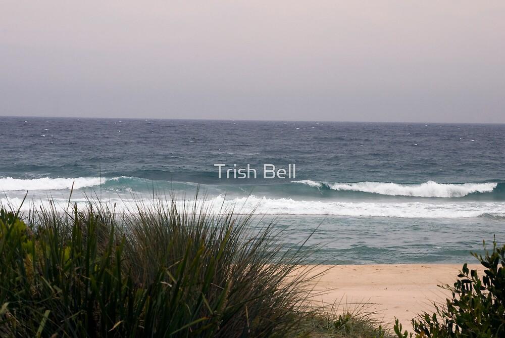 Narrawallee Beach by Trish Bell