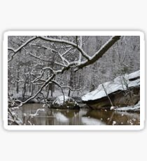 Winter on the River Sticker