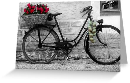 French Wheels And Onions! by Pamela Jayne Smith