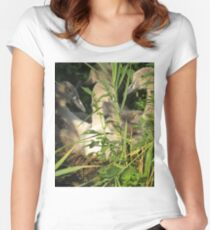 National Trust, Jurassic Coast, Purbeck  Women's Fitted Scoop T-Shirt