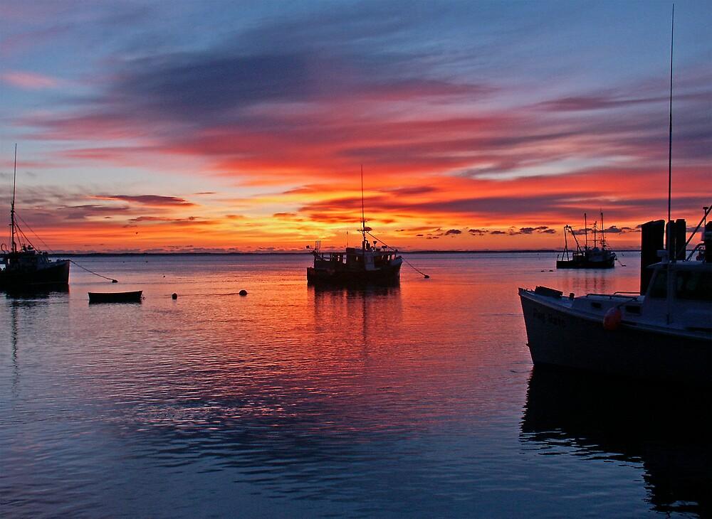 Sunrise by Stephen Senter