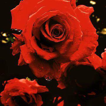 Flower 2 by Miart