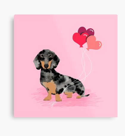 Dachshund love heart balloons valentines day pet portrait doxie lover  Metal Print