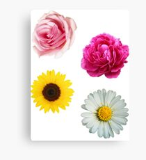 Flowers Set Canvas Print