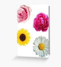 Flowers Set Greeting Card