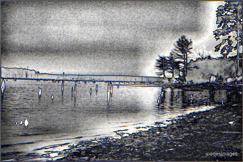 Lake Erling B&W by wadesimages