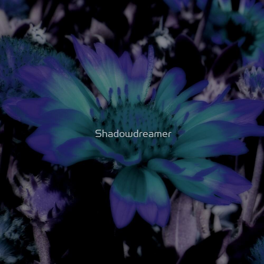 Bleu by Shadowdreamer