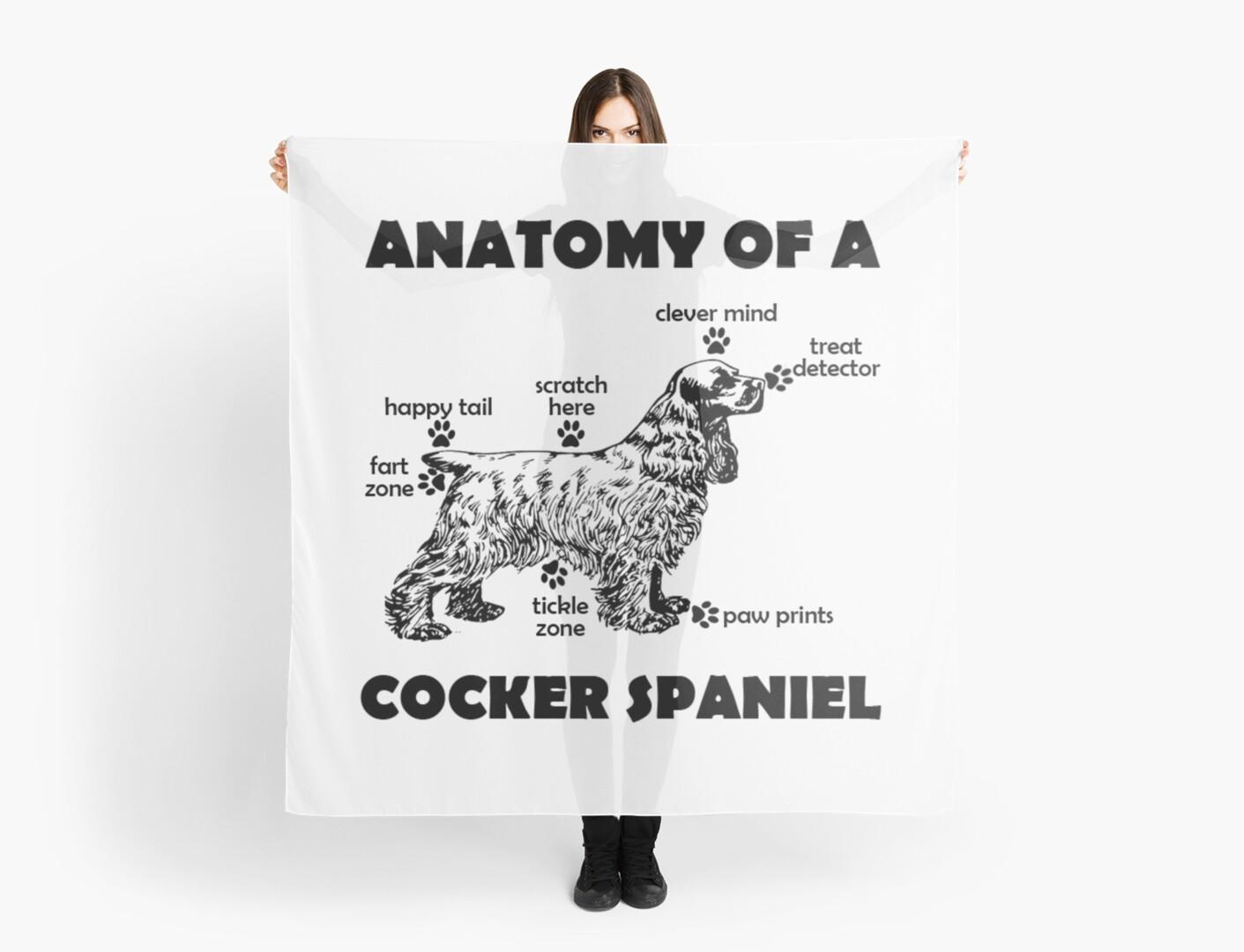 Pañuelos «Camiseta divertida de cocker spaniel Anatomía de una raza ...