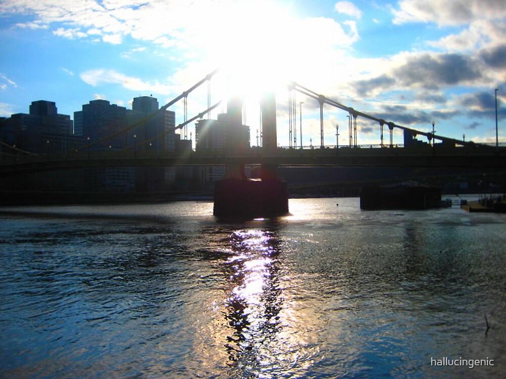 Sixth Street Bridge - Pgh Pa by hallucingenic