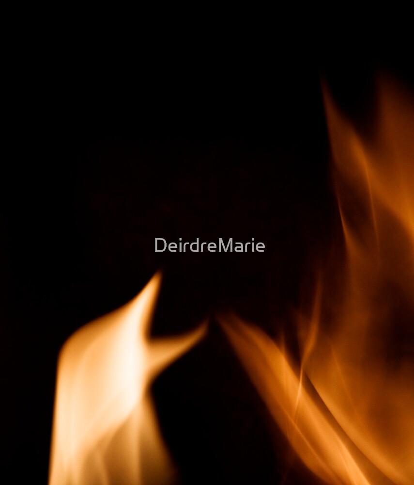Fire bird by DeirdreMarie