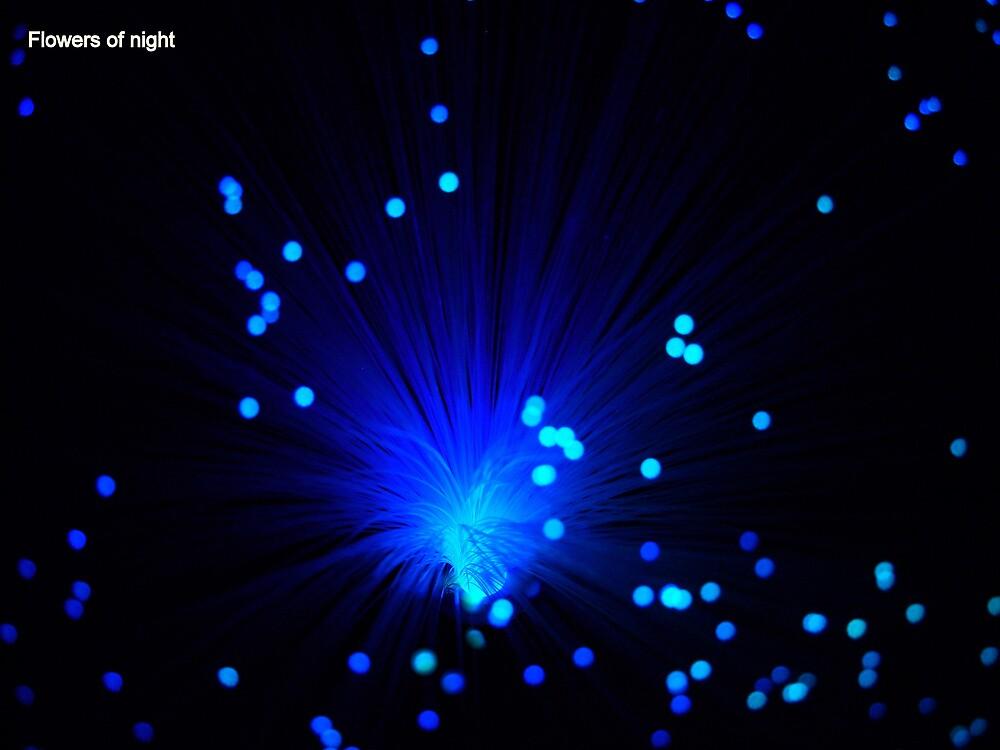 Flowers of night - 3 by Kulfon