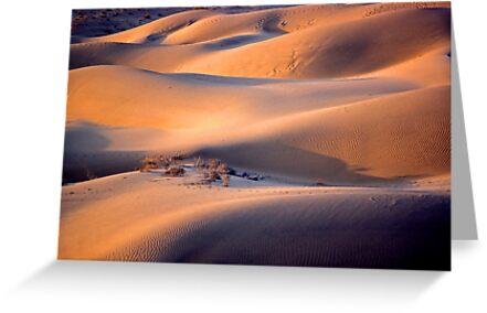 The dunes of Taar désert by Rémi Bridot