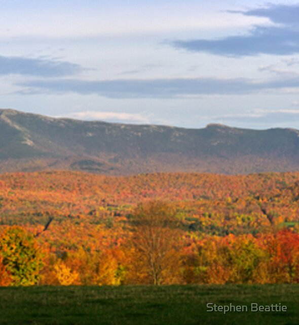 Mount Mansfield Foliage - Panorama by Stephen Beattie