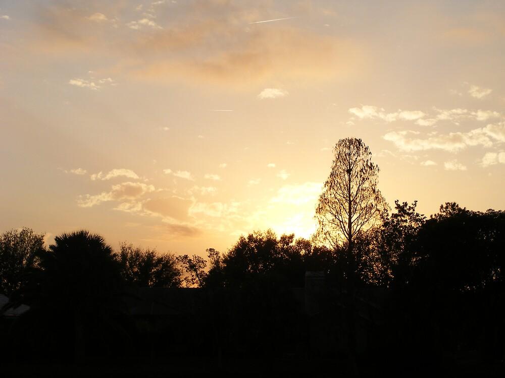 beautiful sunset by sirfinepix27
