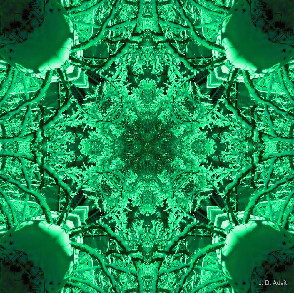 Celtic Winter by J. D. Adsit