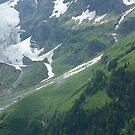 Spring in the Austrian Alps. 2005 . Dr.Andrzej Goszcz. No.3.. #DrAndrzejGoszczPhotography by © Andrzej Goszcz,M.D. Ph.D