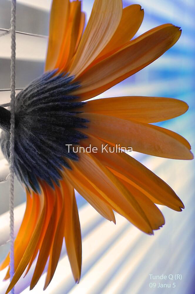 Kishelyen by Tunde Kulina