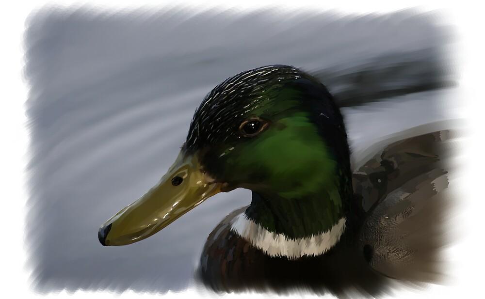 Duck by photobrush