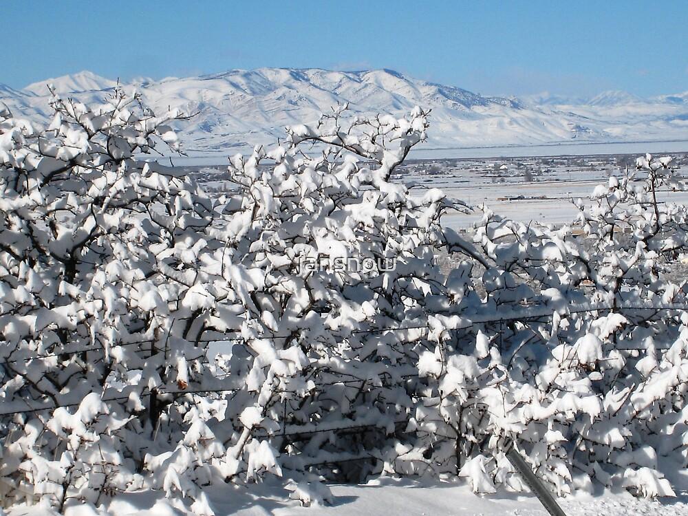 Frozen Oak by jansnow