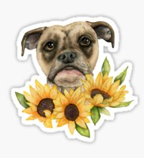 Cheerful | Bulldog Mix with Sunflowers Watercolor Painting Sticker