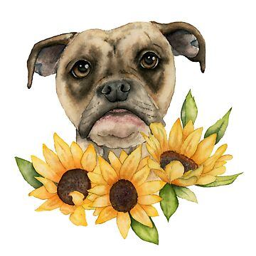 Cheerful   Bulldog Mix with Sunflowers Watercolor Painting by namibear