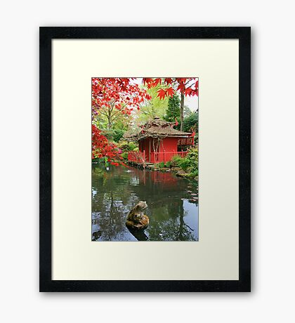 Frog Went a Courting Framed Print