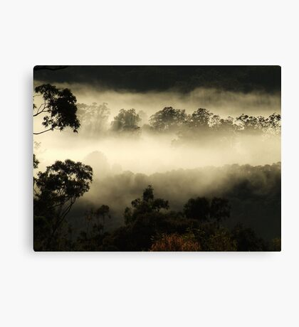 """""""Gums in the Mist"""" Canvas Print"""