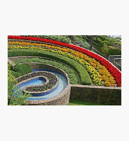 Rainbow Garden, Beer Photographic Print
