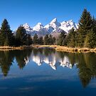 Grand Teton National Park, Wyoming, USA. by Teddy  Sugrue