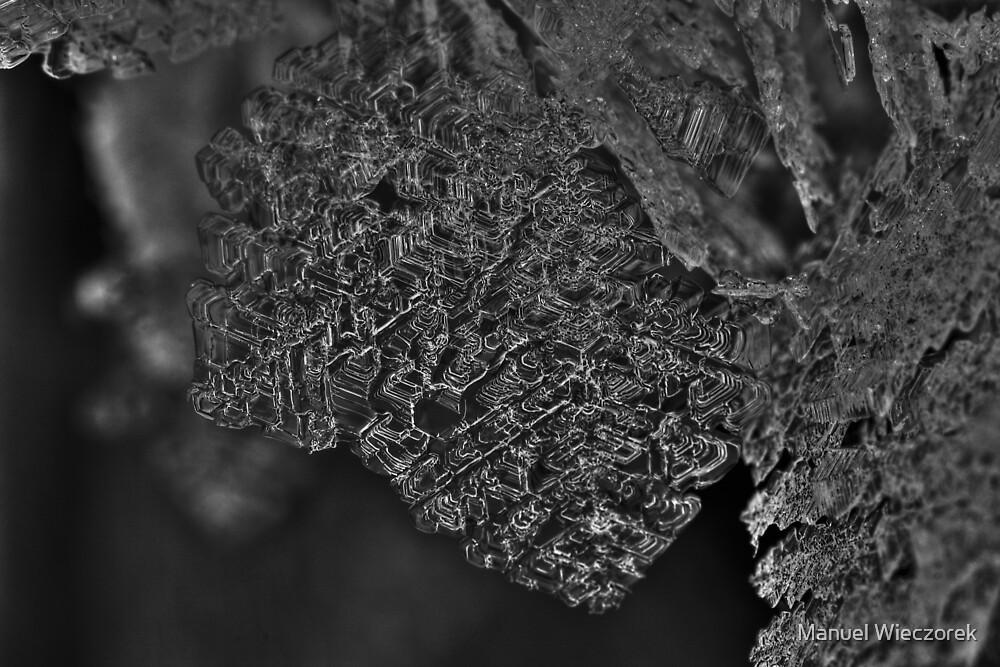 ice crystal by Manuel Wieczorek