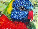 Rainbow Lorikeet - Acrylic by Paul Gilbert