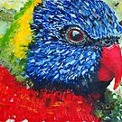 Rainbow Lorikeet - Acrylic by Paul Gilbert