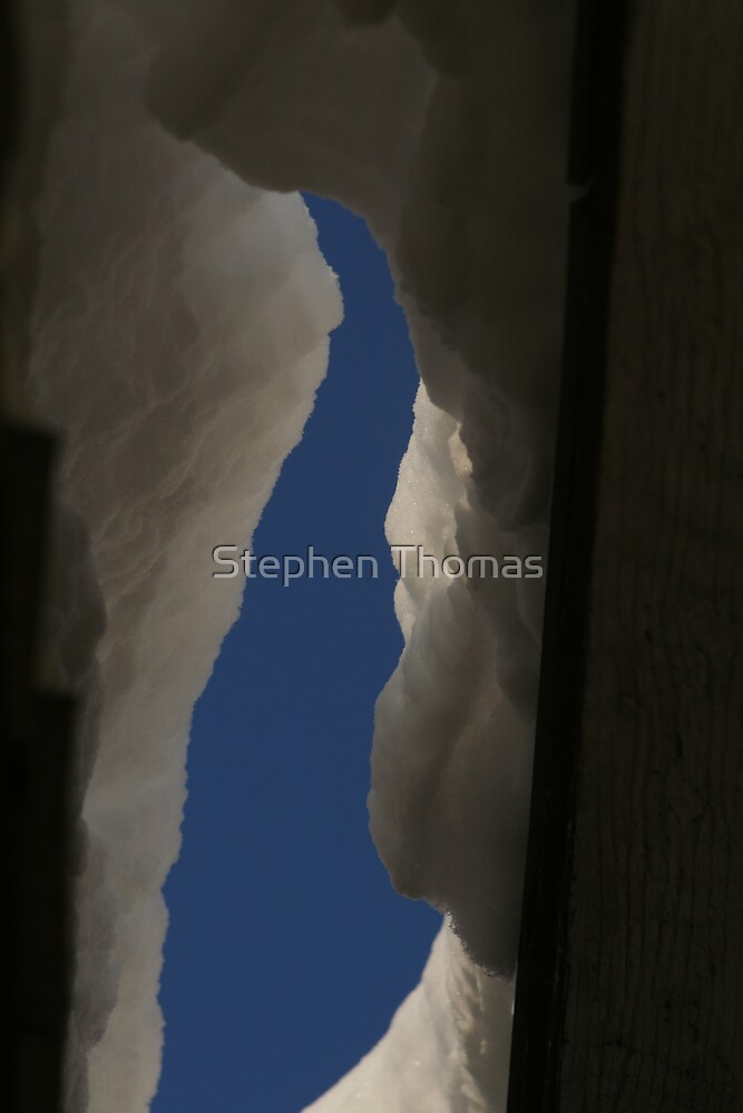Looking Up Thru The Snow by Stephen Thomas