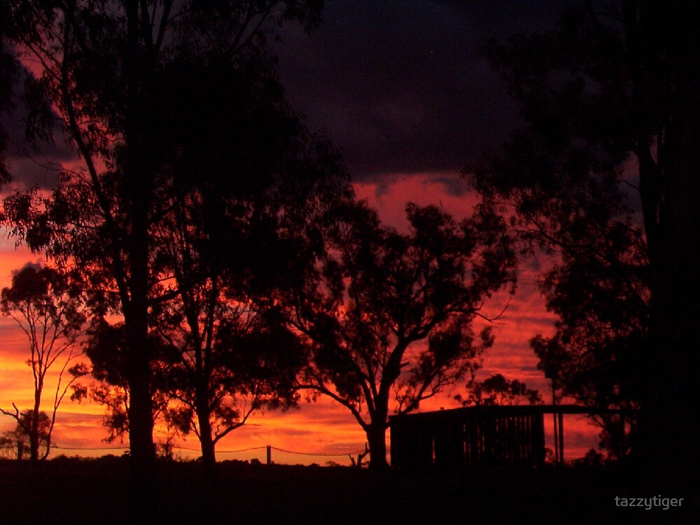Murray River Sunset by tazzytiger