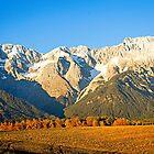 Autumn in the Alps Tyrol by Elzbieta Fazel