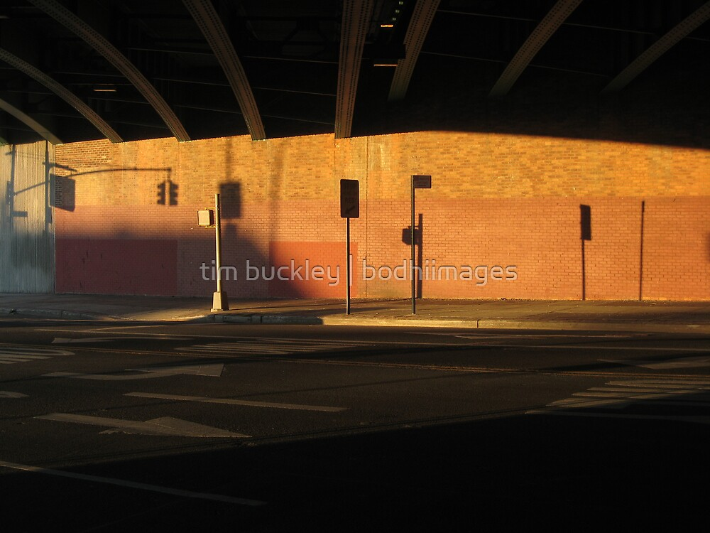 bqe bridge, brooklyn. new york  by tim buckley   bodhiimages