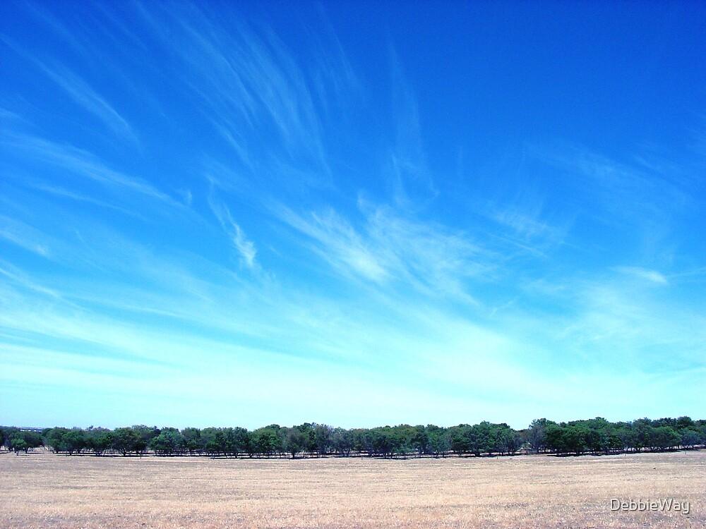 Sky  by DebbieWay