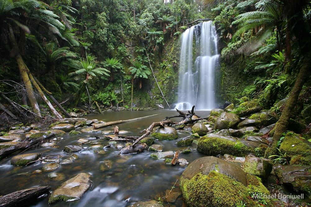 Beachamp Falls, Otways National Park, Australia by Michael Boniwell