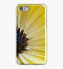 Osteospermum iPhone Case/Skin